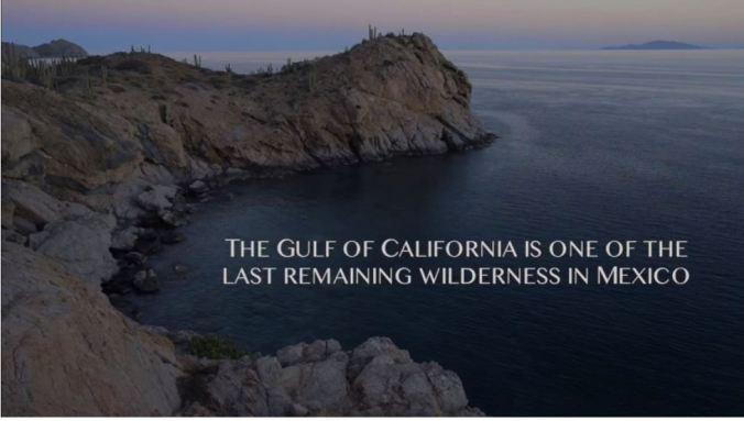 California gulf